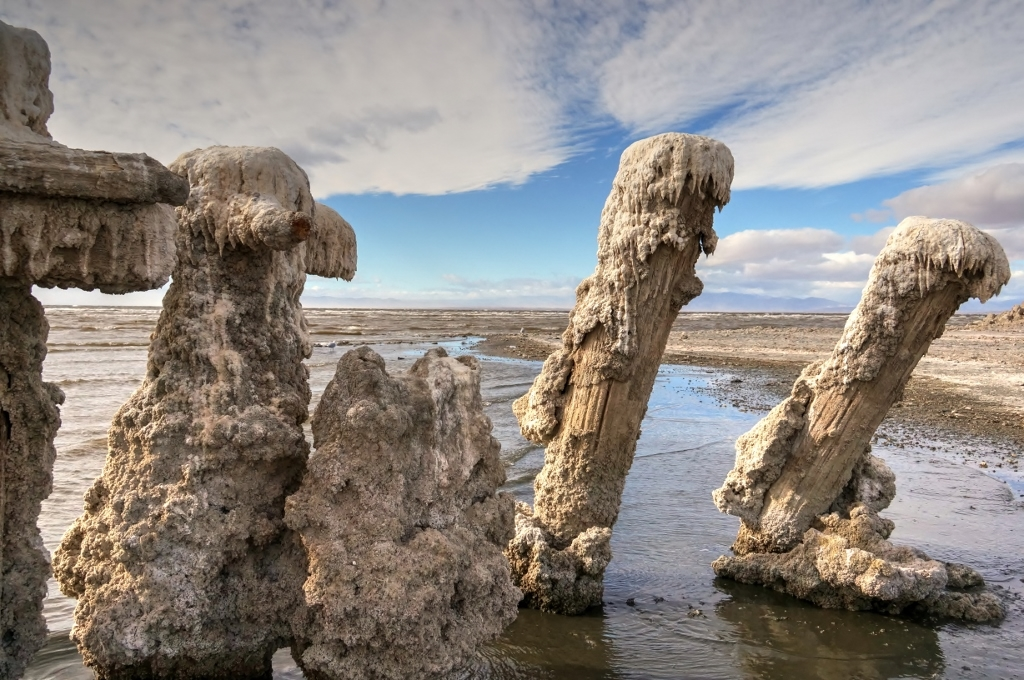 Bombay Beach Salted Pilings 4