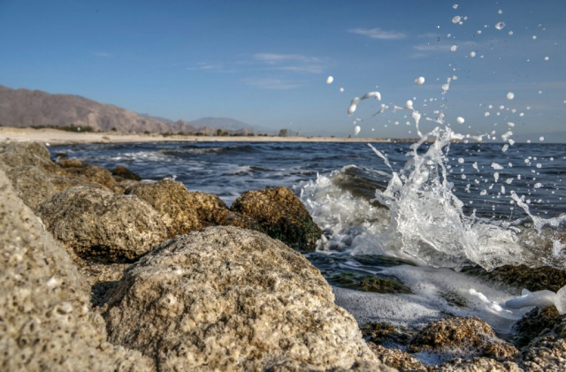 Salton Sea Beach Wave